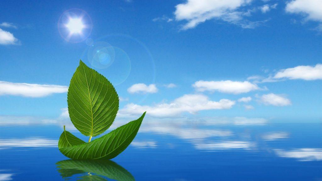 Dịch vụ tư vấn hồ sơ về môi trường