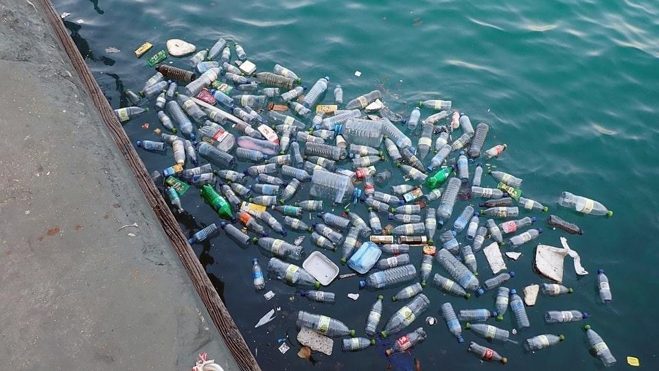 Rác thải nhựa gây nguy hại cho môi trường biển