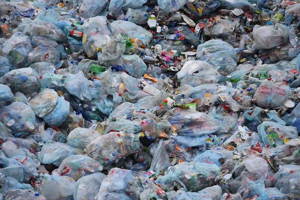 Rác thải sinh hoạt gây ô nhiễm